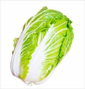 野菜 白菜