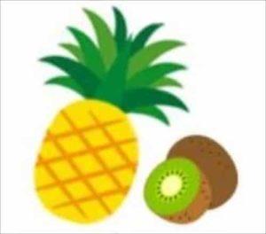 お肉 フルーツ パイナップル キウイ