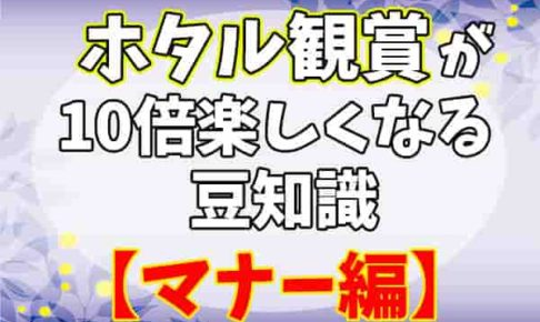 ホタル観賞 マナー編-