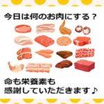 鶏肉 豚肉 牛肉
