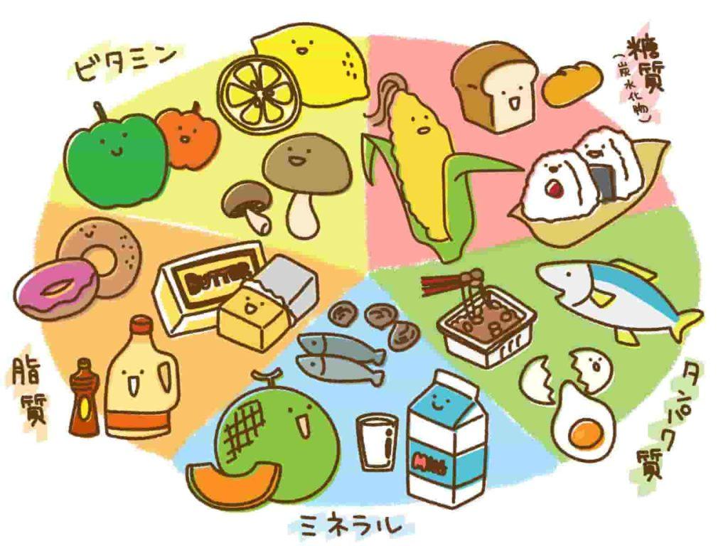 五大栄養素